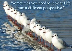 Sometimes you need a change of perspective (image by www.billystevens.tv)