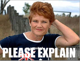 day to day politics the hanson factor please explain the